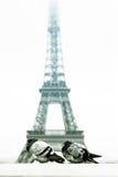 najwyższej wieży eiffela zimy. zdjęcia royalty free