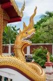 NAK de Phaya Fotografia de Stock
