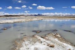Сильно соляной Nak Ruldan озера около деревни Yakra в Тибете, Китае стоковые фотографии rf