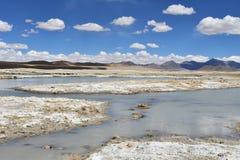 Сильно соляной Nak Ruldan озера около деревни Yakra в Тибете, Китае стоковое изображение