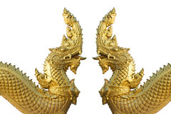 Naka Dragon Stock Fotografie