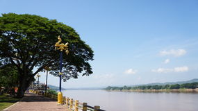 Naka and Mekong river. Mythical serpent-like creatures, believe by locals to live in the Mekong river Royalty Free Stock Photo