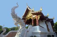 Naka twee naast tempeltrede Royalty-vrije Stock Fotografie