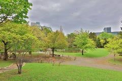 The Nakajima Park  at  Sapporo, hokkaido Japan Royalty Free Stock Image