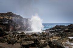 Nakalele blåshål av Maui Hawaii Arkivfoton