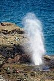 Nakalele blåshål på Maui royaltyfri fotografi