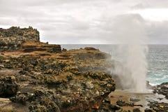 Nakalele Blowhole, Maui Royalty Free Stock Images
