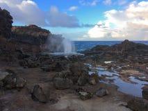 Nakalelegietgal met water die uit bespuiten dat van Vreedzame Oceaangolven gecreeerd werd die de lange rotsachtige klippenkustlij Royalty-vrije Stock Afbeeldingen