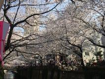 Nakameguro kanał Zdjęcie Royalty Free