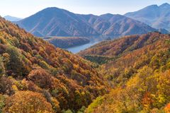 Nakatsugawa gorge from view point Azuma lake line royalty free stock photos