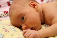 Naked baby Stock Image