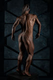 The naked body of a woman bodybuilder. Stock Images