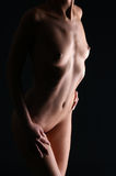 Naked body of a young and beautiful woman Royalty Free Stock Image