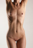 Naked body of a young and sexy Caucasian girl Stock Image