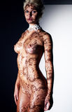 Naked body of young sexy woman in shadow blinds Stock Photo