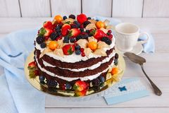 Naked cake with cream. Decorated with berries royalty free stock photo