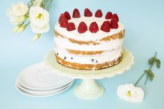 Naked cake royalty free stock images