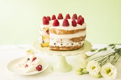 Naked cake royalty free stock photo