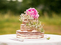 Naked cake Stock Images