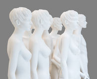 Naked display dummies. Isolated naked display dummies with grey background Royalty Free Stock Photography