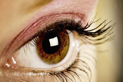 Naked Eye. Close up of a girl's eye (brown) with pink eye shadow and black mascara Stock Photo