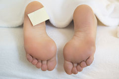 Naked feet in bed with notepaper Royalty Free Stock Photos