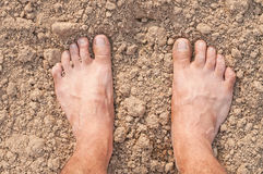 Naked Feet Stock Photography