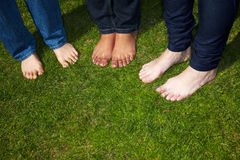 Naked feet in grass Royalty Free Stock Photo