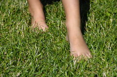 Naked girl foot in grass Royalty Free Stock Image