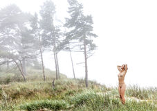 Naked girl in a misty forest Stock Image