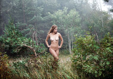 Naked girl in a misty forest Royalty Free Stock Images