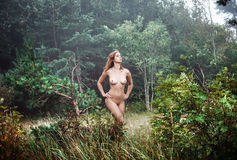 Naked girl in a misty forest Stock Photo