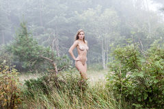 Naked girl in a misty forest Royalty Free Stock Photography