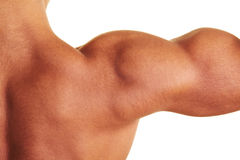 Naked male shoulder. Closeup of naked male shoulder with flexed muscles stock photo