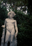 Naked male statue boboli gardens. Naked male statue in boboli gardens in Florence Royalty Free Stock Photography