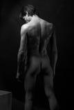 Naked man Royalty Free Stock Photos