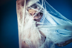 Naked man trapped in a huge spider web Royalty Free Stock Image