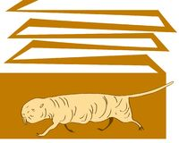 Naked mole rat runs in tunnel. Vector image. Royalty Free Stock Photography