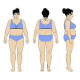 Naked standing woman. Full length front, back, side view of a fat standing naked woman, isolated on white background. Vector illustration. You can use this image Stock Images