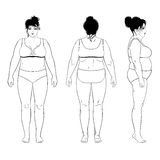 Naked standing woman. Full length front, back, side view of a fat standing naked woman,  on white background. Vector illustration. You can use this image for Stock Images