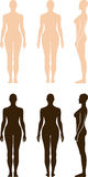 Naked standing woman vector sihouette. Full length front, back, side view of a standing naked woman. You can use this image for fashion design and etc Royalty Free Stock Photos