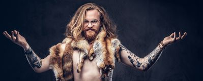 Naked tattoed redhead hipster male with long luxuriant hair and full beard posing with the fox skins on his shoulders in. A studio. Isolated on the dark royalty free stock photo
