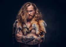 Naked tattoed redhead hipster male with long luxuriant hair and full beard posing with the fox skins on his shoulders in royalty free stock images