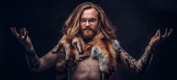 Naked tattoed redhead hipster male with long luxuriant hair and full beard posing with the fox skins on his shoulders in stock images