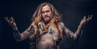 Naked tattoed redhead hipster male with long luxuriant hair and full beard posing with the fox skins on his shoulders in royalty free stock photo