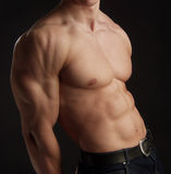 Naked torso of muscular man Stock Photography
