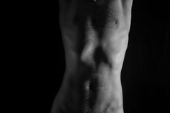Naked torso of young man Stock Photography