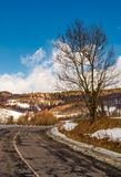 Naked tree by the curve road in winter. Lovely transportation scenery in mountains under the blue cloudy sky Royalty Free Stock Image