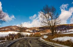 Naked tree by the curve road in winter. Lovely transportation scenery in mountains under the blue cloudy sky Stock Photos
