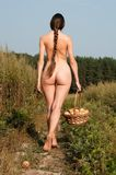 Naked woman on the field Stock Images